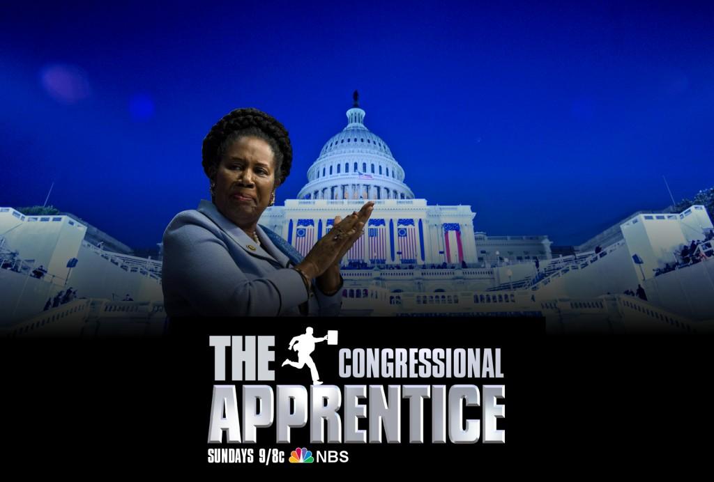 congressional apprentice