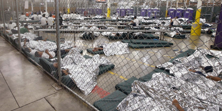 kids in cages2