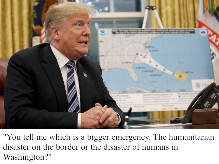 Trump Emergency Declaration_p2